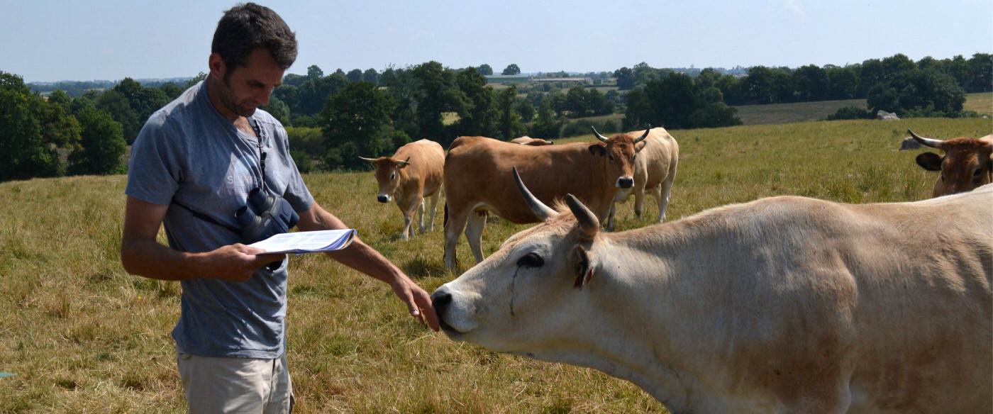 Des éleveurs engagés dans la conservation de la race